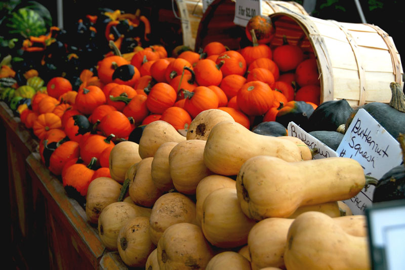 Butternut squash and other fall produce for sale at a farmers market