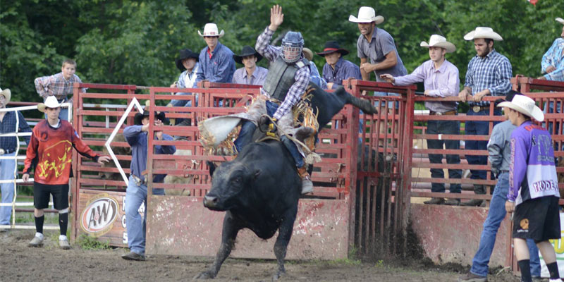 a man and a bull participating in the rodeo, he's trying to hang onto the bull as he rides him