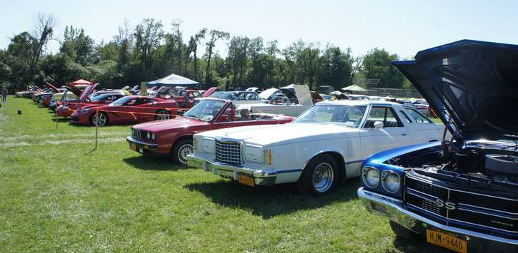 classic cars in a row on a lawn