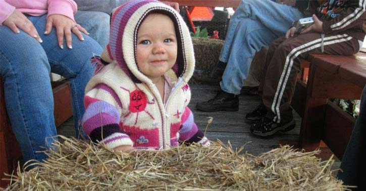 little girl in pink and purple sweater hoodie on a hayride
