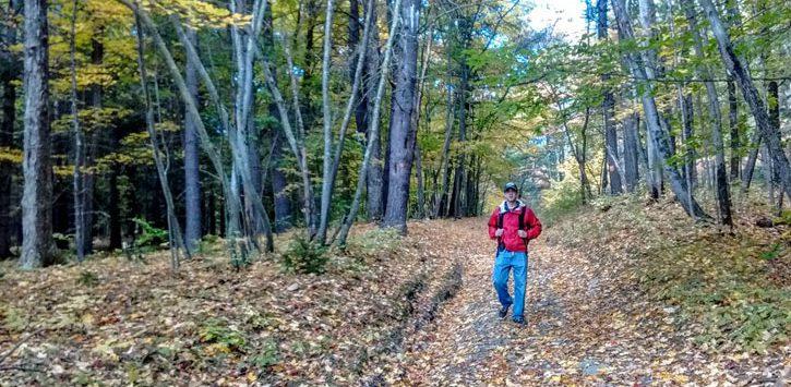 man hiking through woods in fall