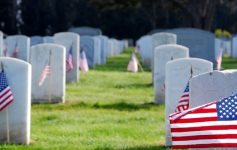 flags in front of graves in a cemetery