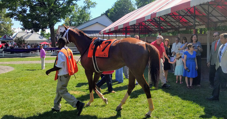 a man leading a horse at the Saratoga Race Course