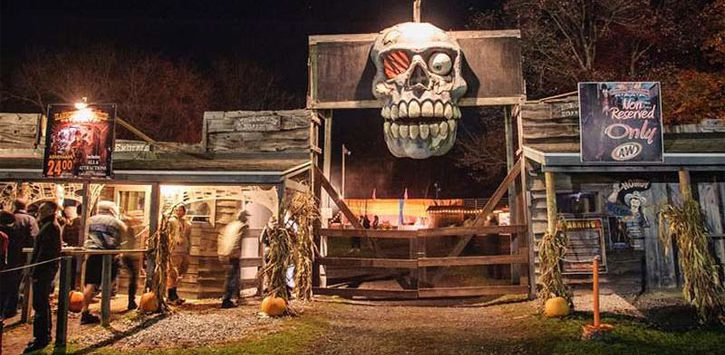 a giant skull at the entrance of a haunted attraction