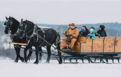 people on a horse drawn sleigh ride