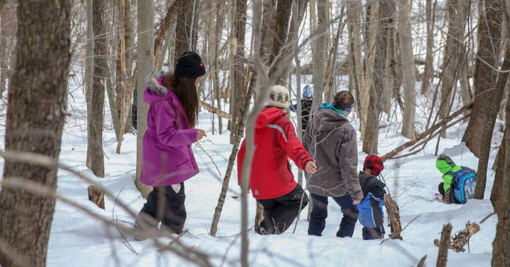 people walking through snowy woods