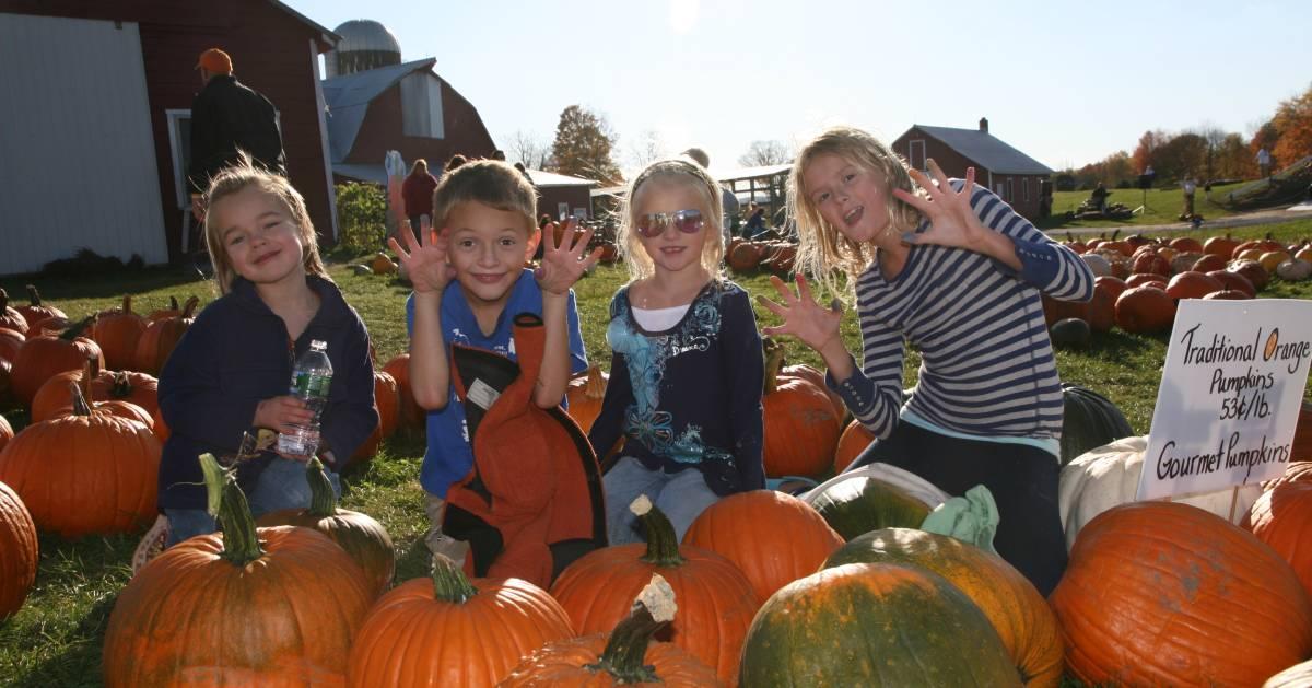 kids near pumpkin patch