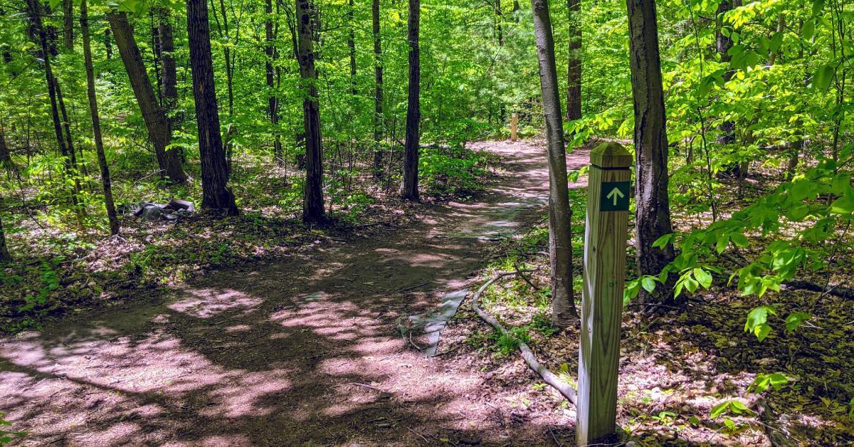 a nature trail