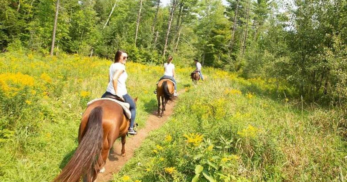three person horseback riding