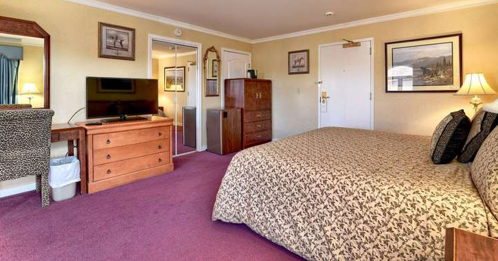 a modern looking hotel room with fuschia carpeting, wooden dresser, full length mirror, etc.