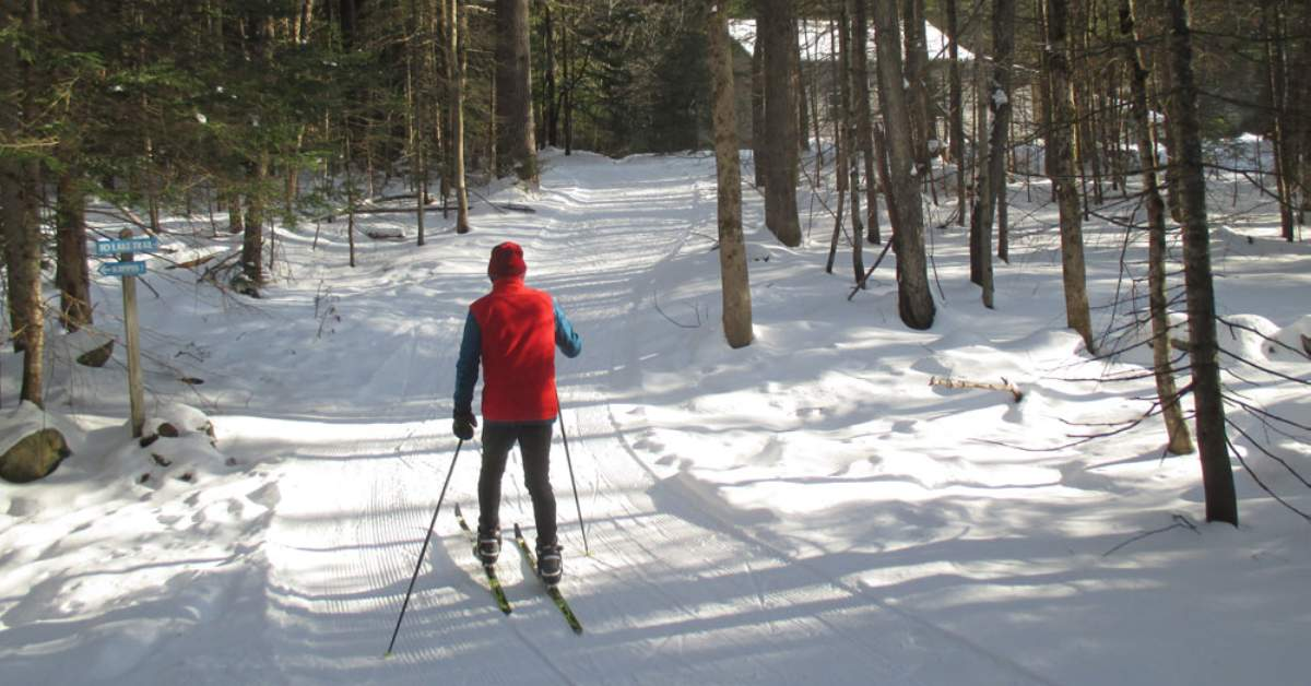 cross coutnry skier in red jacket
