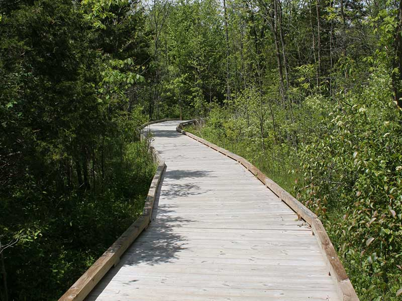 Elevated wood path at Mohawk Landing Nature Preseve in Rexford NY